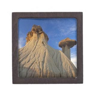 Badlands formations at Makoshika State Park in Premium Trinket Box