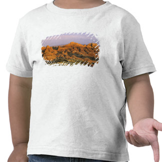 Badlands National Park in South Dakota Tshirts