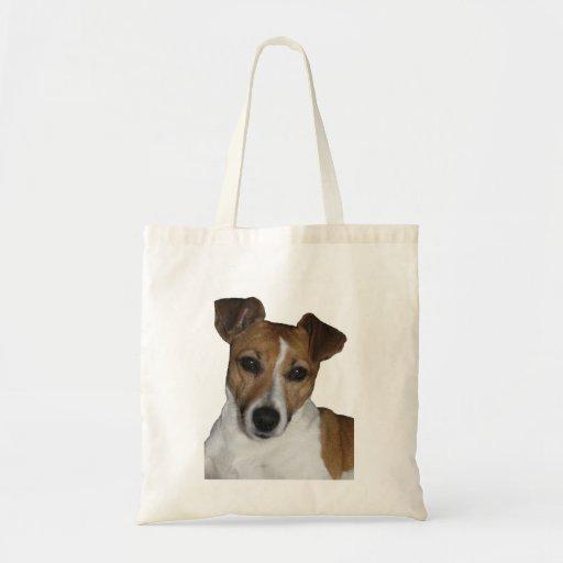 Bag Jack Russell Terrier