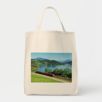 Bag of large Alpsee with Immenstadt