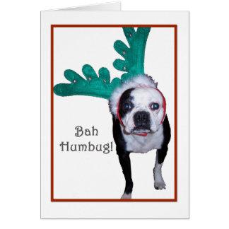 Bah Humbug! - Boston Terrier Card