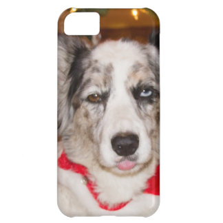 Bah Humbug!!! Case For iPhone 5C