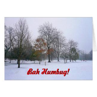 Bah Humbug! Greeting Card