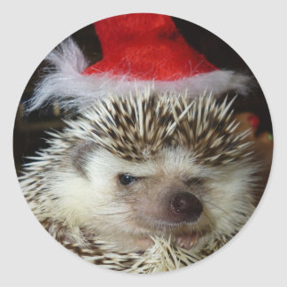 Bah Humbug-stickers Classic Round Sticker