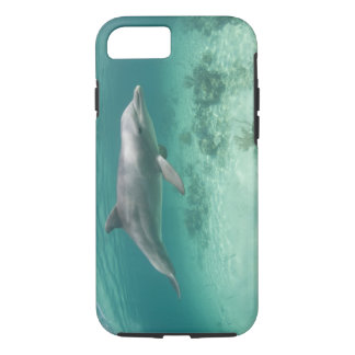 Bahamas, Grand Bahama Island, Freeport, Captive 6 iPhone 7 Case