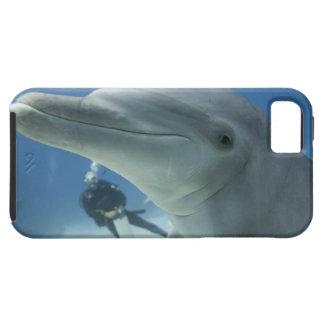 Bahamas, Grand Bahama Island, Freeport, Scuba 2 iPhone 5 Cases