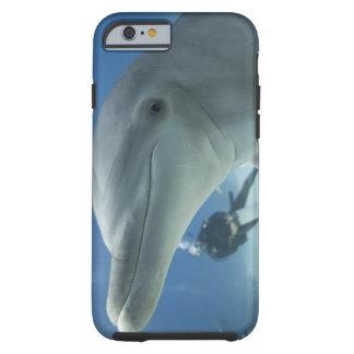Bahamas, Grand Bahama Island, Freeport, Scuba 2 Tough iPhone 6 Case