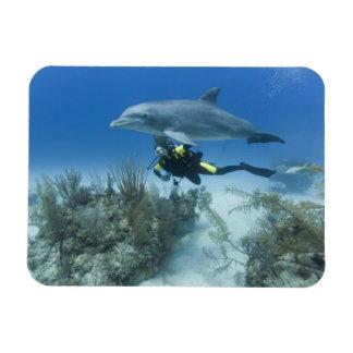 Bahamas, Grand Bahama Island, Freeport, Scuba Magnet