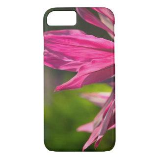 BAHAMAS, New Providence Island, Nassau: Paradise iPhone 7 Case