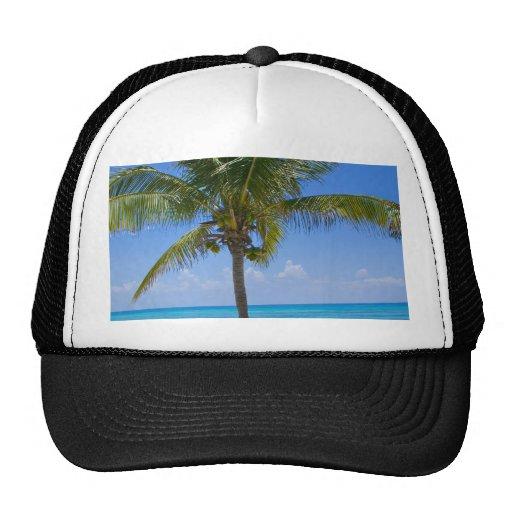 Bahamas Palm Tree Trucker Hats