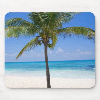 Bahamas Palm Tree Mouse Pad