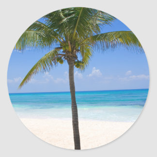 Bahamas Palm Tree Round Sticker