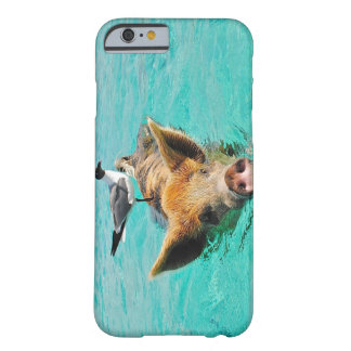 Bahamas Swimming Pig and Seagull Barely There iPhone 6 Case