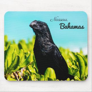 Bahamian Black Bird Mouse Pad