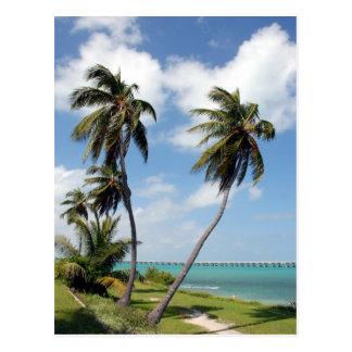 Bahia Honda State Park And Seven Mile Bridge Postcard