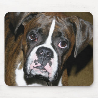 Bailey Close Up Mouse Pad