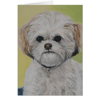 """Bailey"" Mixed Bichon Shihtzu Dog Art Note Card"