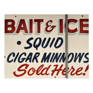 Bait Shop Sign Postcard