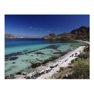 Baja Conception Bay Postcard