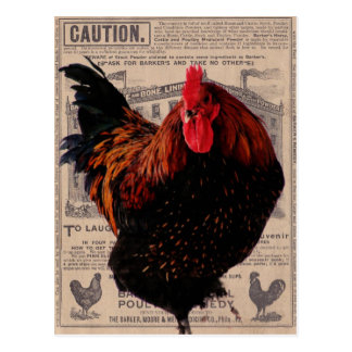 Baker's Special Poultry Postcard