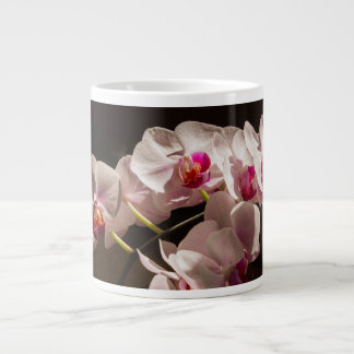 Balboa Park White Pink Orchid Flowers Large Coffee Mug