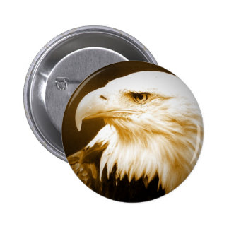 Bald American Eagle Eye Button