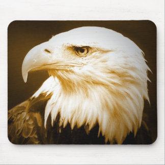 Bald American Eagle Eye Mousepads