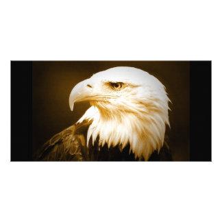 Bald American Eagle Eye Custom Photo Card