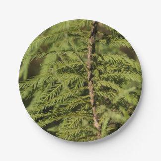 Bald Cypress Branch Paper Plate