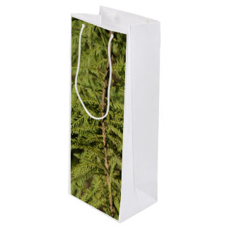 Bald Cypress Branch Wine Gift Bag