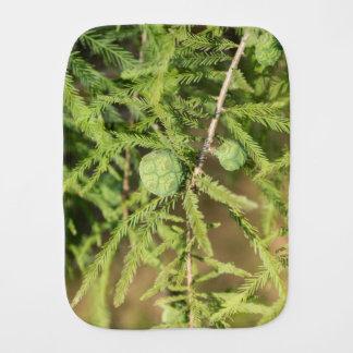 Bald Cypress Seed Cone Burp Cloth