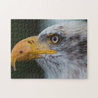 Bald Eagle Beauty 11x14 Jigsaw Puzzle