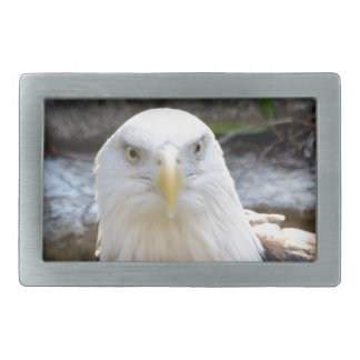 BALD EAGLE BELT BUCKLES