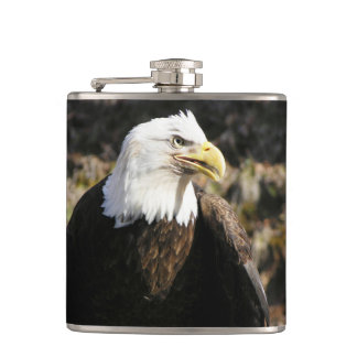 Bald Eagle Bird Hip Flask