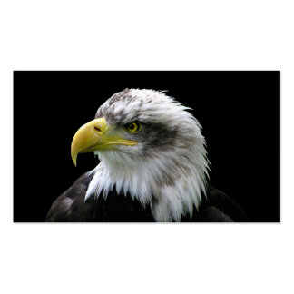 Bald Eagle Business Cards
