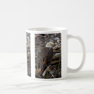 Bald Eagle by Snowy Nest Mug