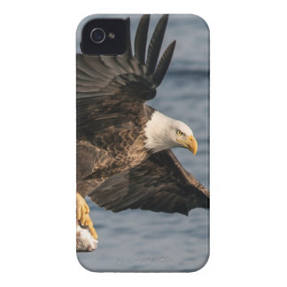 Bald Eagle Catching Food Case-Mate iPhone 4 Case