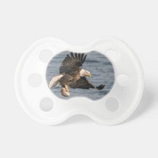Bald Eagle Catching Food Dummy