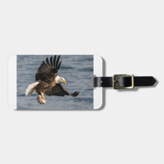 Bald Eagle Catching Food Luggage Tag