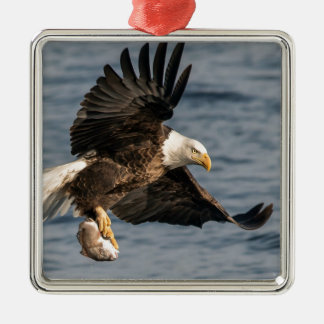 Bald Eagle Catching Food Metal Ornament