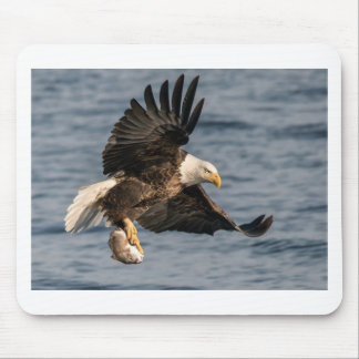 Bald Eagle Catching Food Mouse Pad