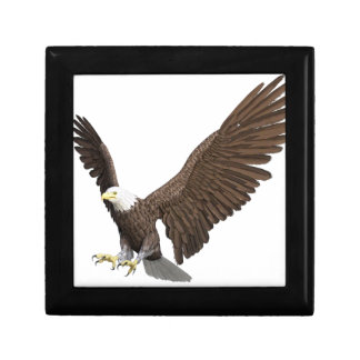 Bald Eagle Coming In For A Landing Gift Box