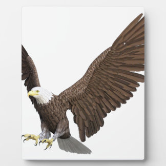 Bald Eagle Coming In For A Landing Plaque