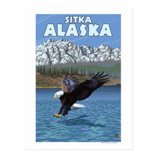Bald Eagle Diving - Sitka, Alaska Postcard