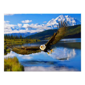 "Bald Eagle Fishing Denali 24"" x 18"" Archival Paper Poster"