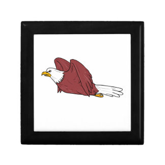 Bald Eagle Flying Cartoon Gift Box