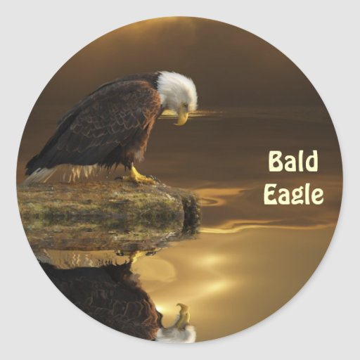 Bald Eagle GRATITUDE Wildlife Photography Sticker