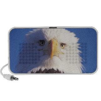 bald eagle, Haliaeetus leucocephalus, head shot, iPhone Speakers