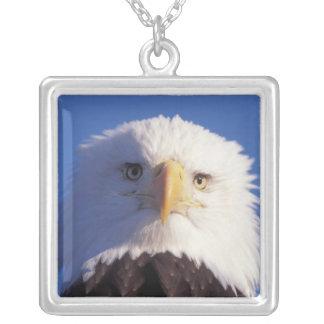 bald eagle, Haliaeetus leucocephalus, head shot, Square Pendant Necklace