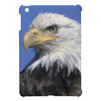 Bald Eagle, (Haliaeetus leucocephalus), wild, iPad Mini Covers